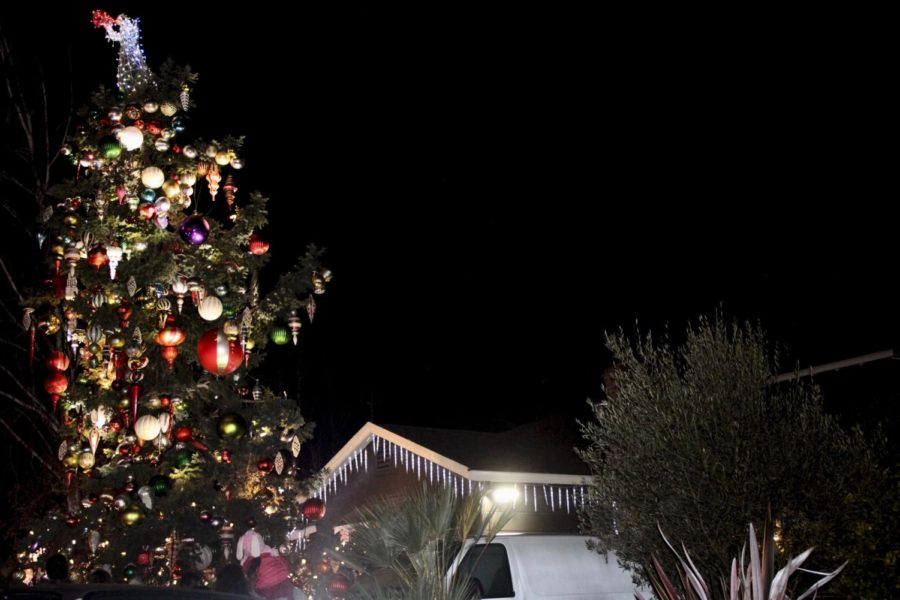 A+two-story-tall+Christmas+tree+towers+over+the+houses+on+the+street.