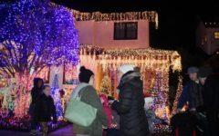 Eucalyptus Avenue lights up the winter season