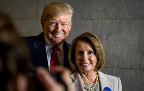President Trump and Speaker of the House, Nancy Pelosi, have met several times throughout the shutdown to discuss a plan for immigration and ending the shutdown.