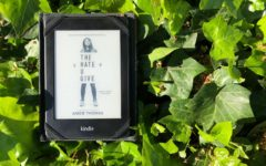 'The Hate U Give' shares important message with readers