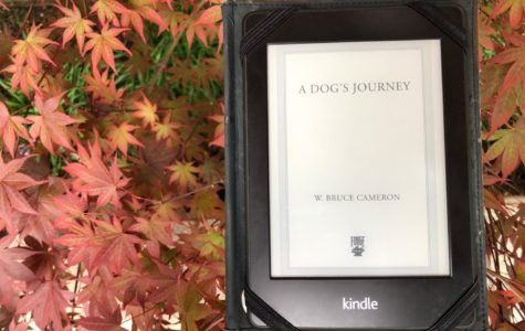 'A Dog's Journey' stirs up emotions with a touching story