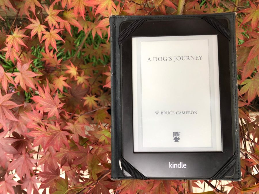 %22A+Dog%27s+Journey%22+by+W.+Bruce+Cameron