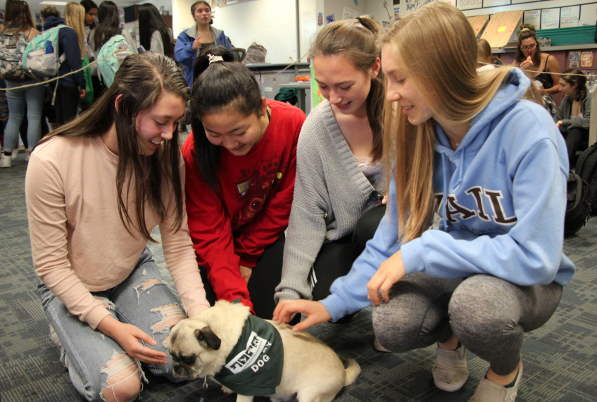 Sophomores Nicole Doud, Emily Kim, Samantha Turtle, and Sabrina Jackson gather around Wilbur the therapy dog.