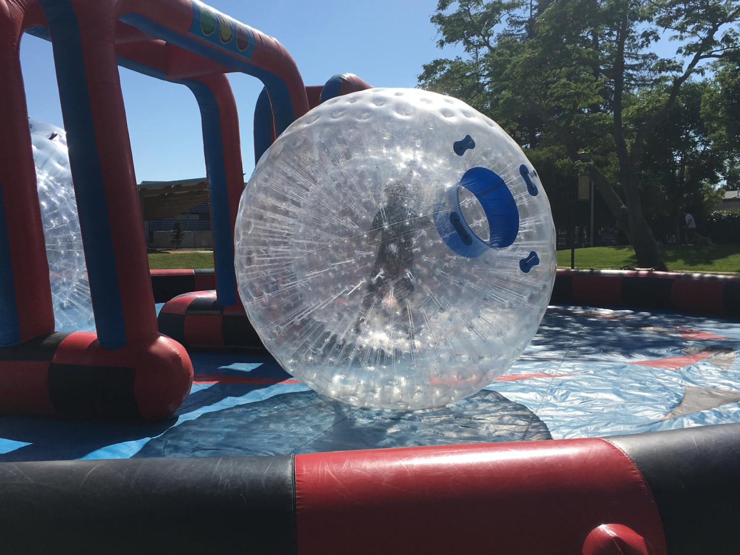 A+teen+rolls+in+a+giant+hamster+ball+in+to+celebrate+the+start+of+summer.+