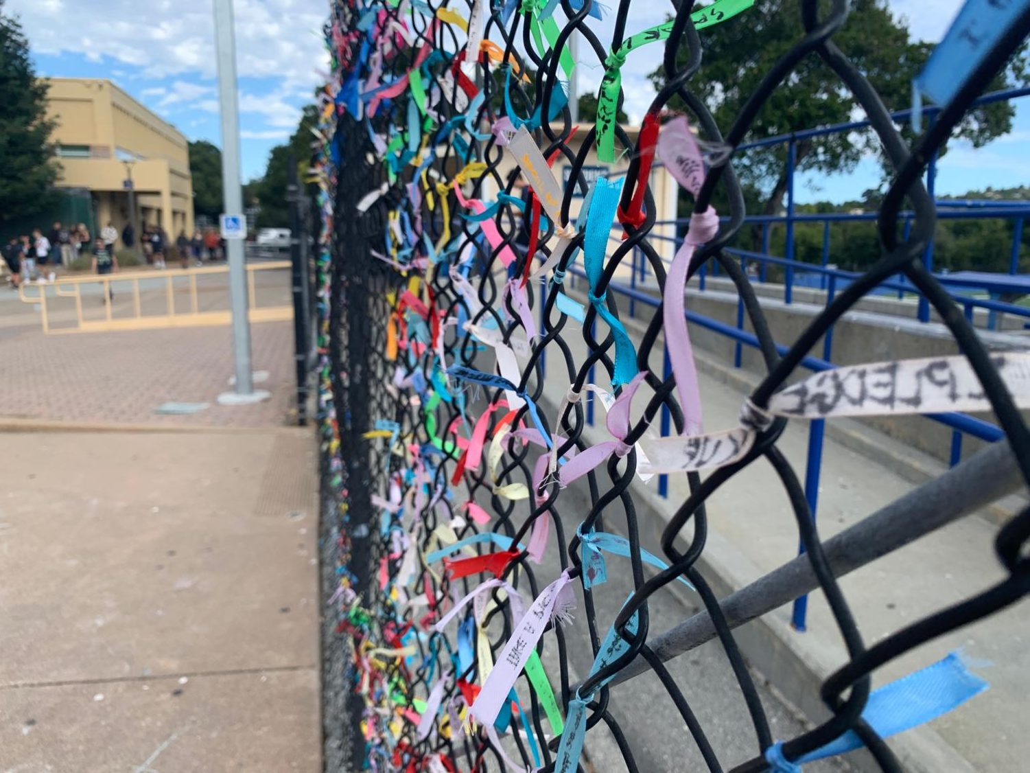 Students can view the ribbons on a fence in the quad.