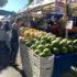 Decline in San Carlos market shines light on active community