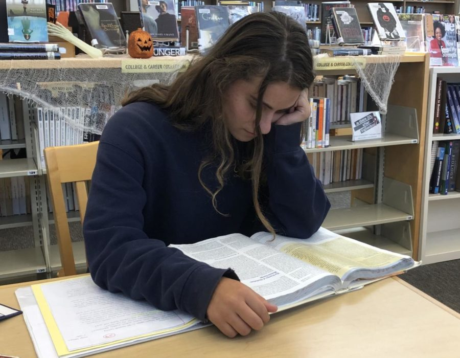 Sophomore Katelyn Gamberin uses an AP testing book to help her prepare for her AP test in the Spring.