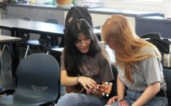 Ukulele Club bonds students through music