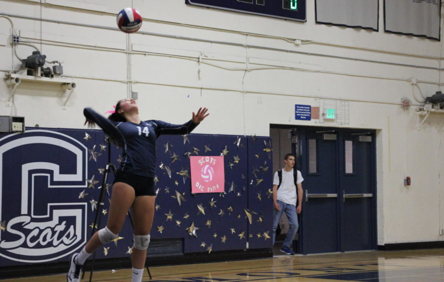 Curly Raddavero, a freshman, jumps up to serve the ball to the Wildcats.
