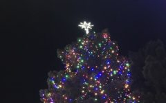Christmas tree lighting is a 'tree-mendous' success