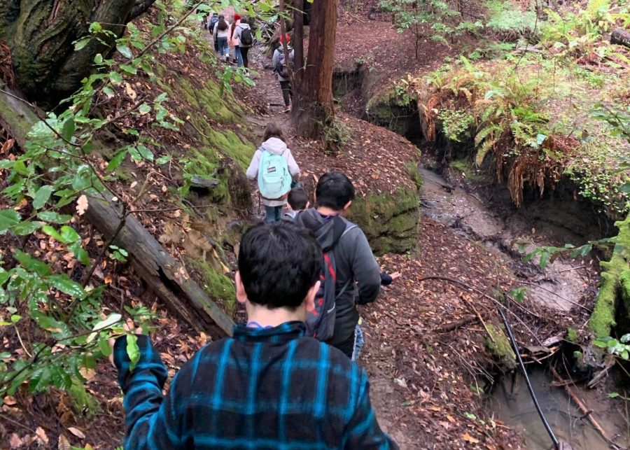 Fifth+graders+explore+the+wilderness+on+a+hike+during+their+Outdoor+Ed+trip.