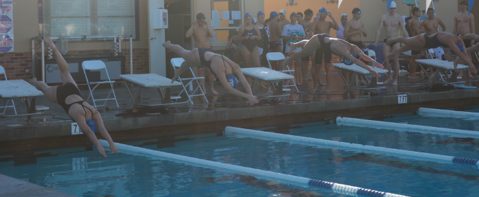 As+the+next+race+begins%2C+a+new+group+of+swimmers+dive+into+the+pool.