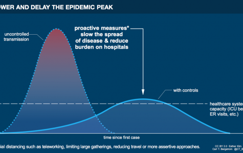 The idea behind social distancing is flattening the curve of the outbreak. This means not reducing the number of people infected but rather the rate at which they become infected. This is critical to ensure the healthcare system is not overwhelmed.