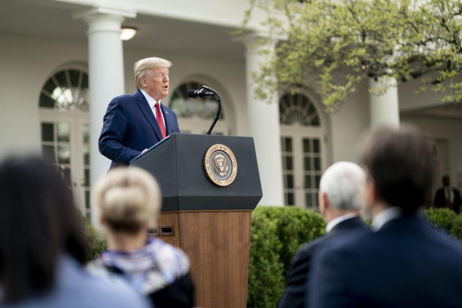 President Donald Trump speaks during a White House Coronavirus Task Force briefing at the White House, in the Rose Garden.