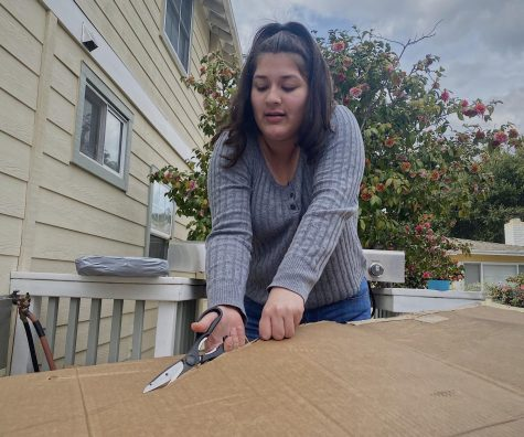 Sophomore Michelle Padilla cuts a piece of carboard that she will use to make her boat.