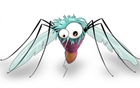 Chloroquine, a drug used to treat malaria, a disease carried by mosquitos, is a potential treatment for coronavirus patients.