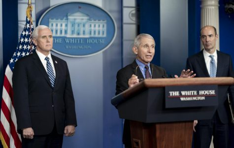 Dr. Anthony Fauci delivers remarks at a White House COVID-19 briefing on April 8.