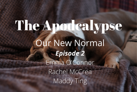 We're four weeks into distance learning, and it's time for a check-in. Join Maddy, Rachel, and Emma as they discuss mental health during quarantine, picking up new hobbies, and how they're staying healthy and sane.