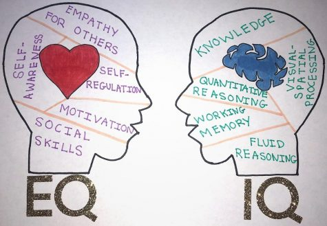 EQ and IQ have opposite characteristics, but both Q-ratings can be observed among different people.