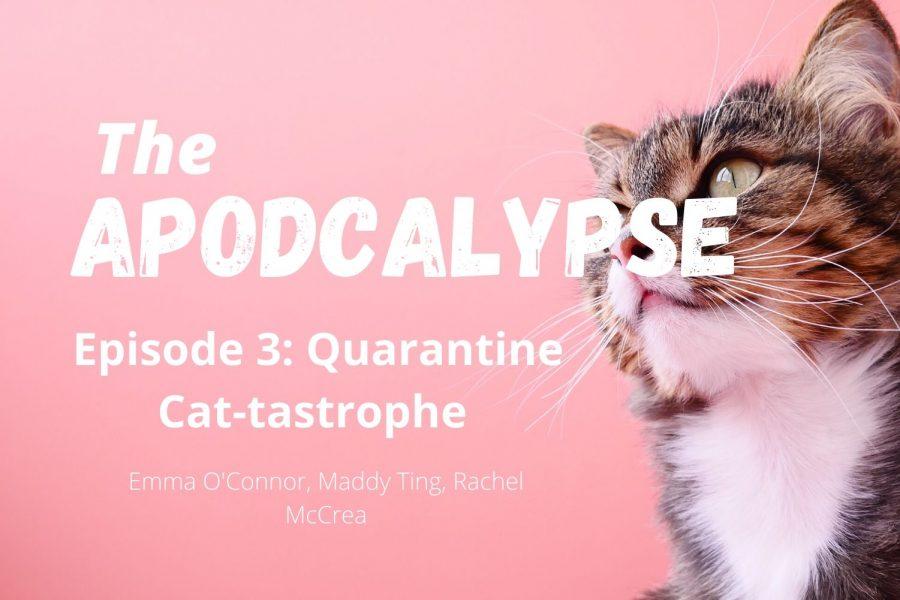 Apodcalypse Ep. 3: Quarantine cat-tastrophe