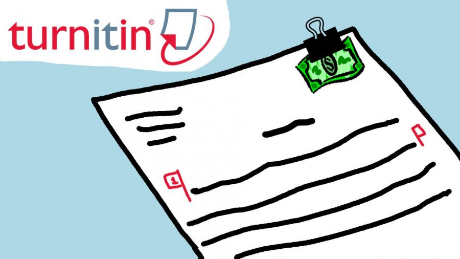 A student's essay is submitted to Turnitin along with a fee for use of the service.