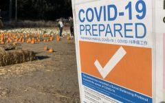 4-C's Pumpkin Farm implements new safety measures to remain open for the community.
