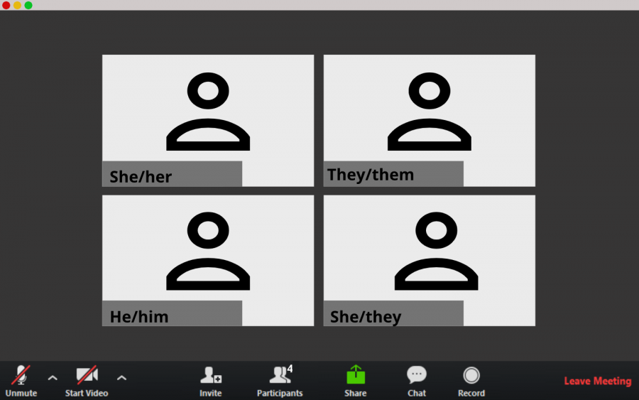 Students can add their pronouns next to their name on Zoom meetings.