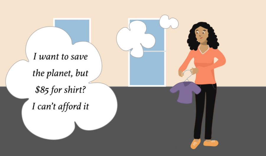 A shopper wants to shop sustainably but the cost is too expensive.