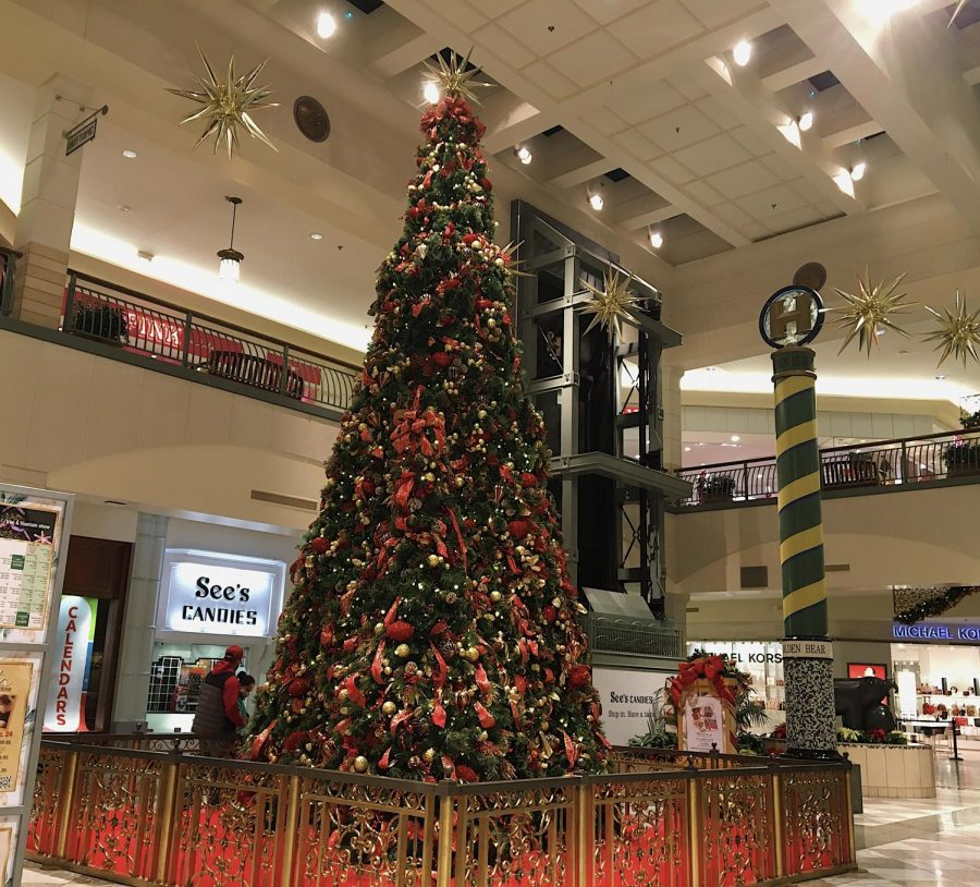 An isolated Hillsdale Mall displays their annual Christmas tree.