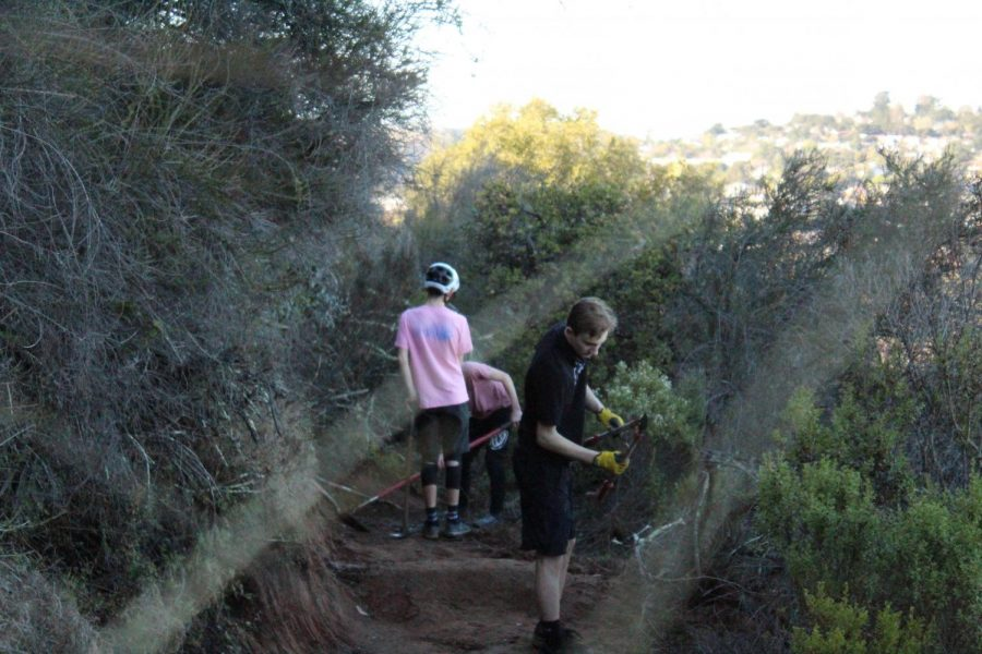 Young outdoor enthusiasts help maintain their local Belmont trails to make the parks better for everyone.