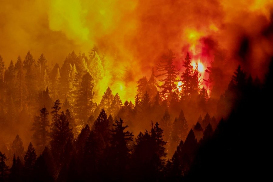 The Caldor Fire has caused many evacuations as residents lives are threatened.