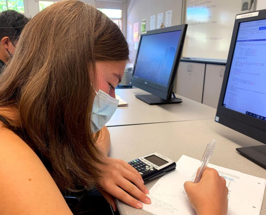 Senior+Kayla+Hogan+has+her+calculator+ready+as+she+studies+her+materials.
