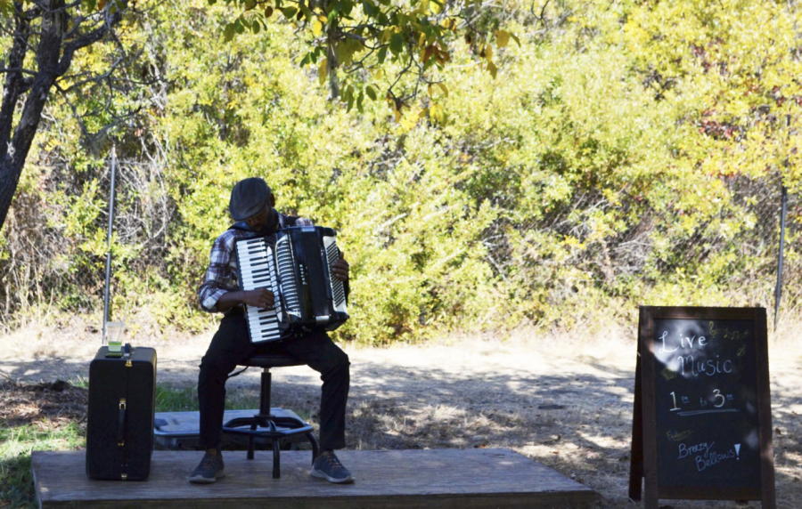 Breezy Bellows performs lively music on his accordion during the event.