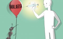 The World Health Organization recently endorsed the first malaria vaccine, known as RTS,S/AS01, after decades of research. It is intended to help save the lives of people, especially children, in high risk areas.