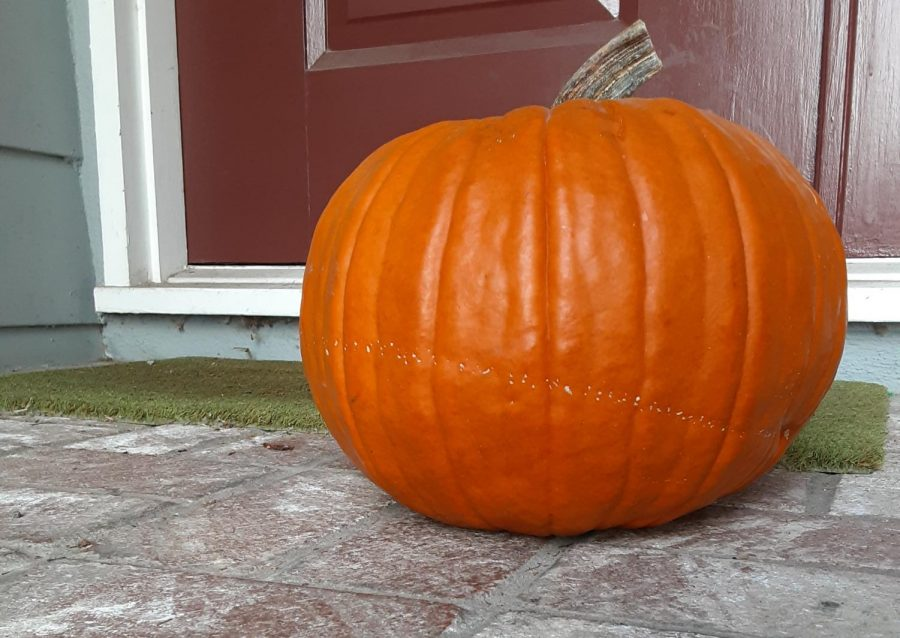 Its spooky season meaning decorations, costumes, candy, and pumpkins!